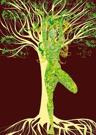yoga green tree