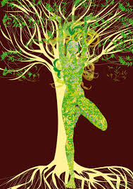 yoga green tree