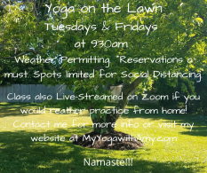 Yoga on the Lawn Tuesdays & Fridays at 930am Weather Permitting. Reservations a must for . Social Distancing.
